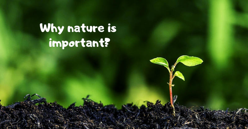 Why nature is important