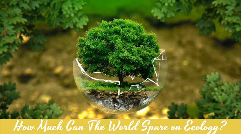 How Much Can The World Spare on Ecology